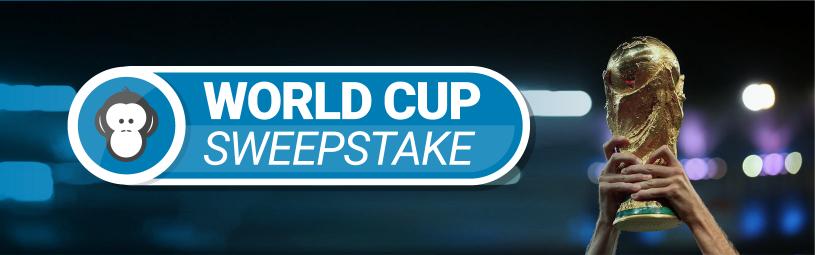 World-Cup-Sweepstake-Banner